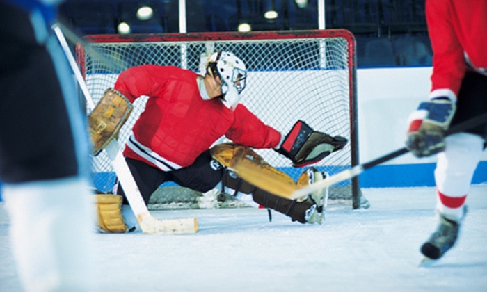 The Sports Training Academy - Erin Mills: Hockey Lesson for One or Three with Ex-Pro Player Mike Kennedy at The Sports Training Academy (Up to 67% Off)