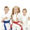 67% Off Martial-Arts Lessons