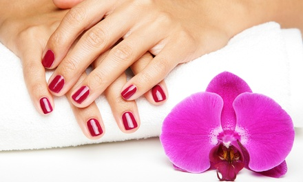 One Spa Mani-Pedi, or One or Three Gelish or Shellac Manicures at Kelly Rae Rose Hair Designs (Up to 53% Off)