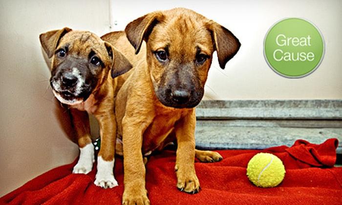 Austin Humane Society: $10 Donation to Austin Humane Society