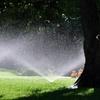 $100 for $1,000 Worth of Sprinkler Installation
