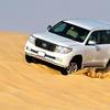 Full-Day Desert Safari