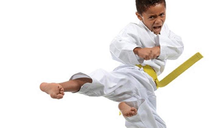 U.S. Elite Taekwondo Academy - Multiple Locations: $20 for $80 Groupon — U.S. Elite Taekwondo Academy