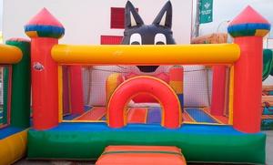 Alquiler de castillo hinchable para fiesta infantil durante 4:30h o 5h desde 49,95 €