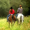 Up to 55% Off Trail Rides at Breckenridge Stables