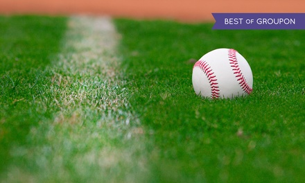 $39 for Metrodome Seat-Back Package with Seat Back and Astro Turf from TheMetrodomeRoof.com ($74.97 Value)