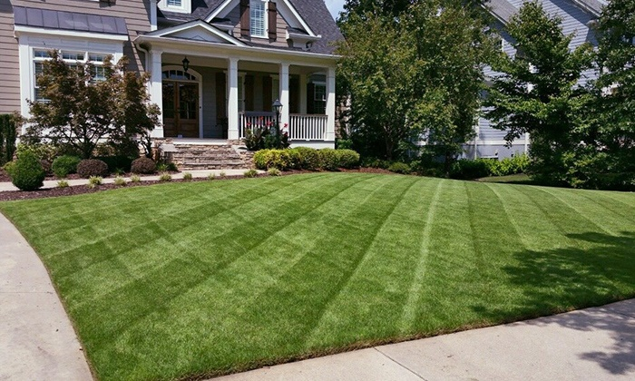 United Lawnscape - Atlanta: Weed Control from United Lawnscape (50% Off). Three Options Available.