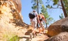 Vertically Inclined - Vertically Inclined: $12 for $25 Worth of Walking — Vertically Inclined