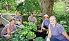 $10 Donation to Help Build Healing Gardens