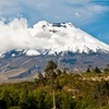 9-Day Tour of Ecuador with Airfare