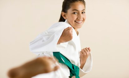 image for Introductory Karate or Jiu-Jitsu Program with Uniform at Busho Kai <strong>Martial Arts</strong> & Fitness (Up to 80% Off)