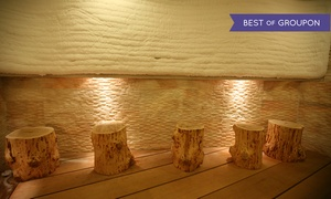 King Spa Fitness: 24-Hour Korean-Spa Admission for One or Two at King Spa Fitness (Up to 46% Off)