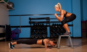 One Healthy Bod: Up to 67% Off Boot Camps at One Healthy Bod