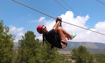 $52 for a Zipline Tour with Nine Lines from Royal Gorge Zip Line Tours ($98 Value)