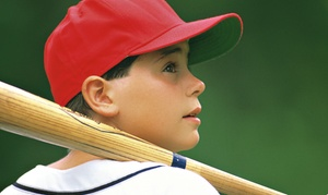 BASH Sports Academy: 60-Minute Batting-Cage Sessions at Bash Sports Academy (Up to 60% Off). Three Options Available.