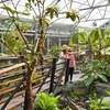 48% Off Botanical Gardens Visit or Membership