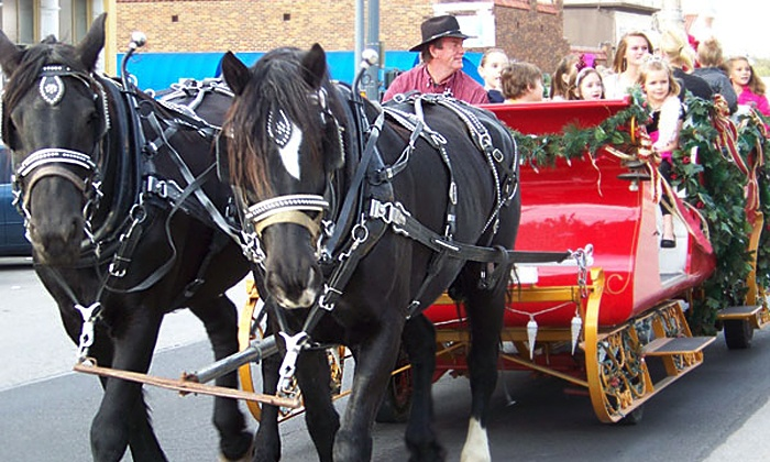 Pleasures Past Carriages - Coppell: Horse-Drawn Christmas Lights Carriage Ride for Up to 6, 12, or 20 from Pleasures Past Carriages (Up to 47% Off)