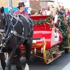 Up to 47% Off a Horse-Drawn Carriage Ride