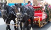 Up to 30% Off Horse-Drawn Ride from Pleasures Past Carriages
