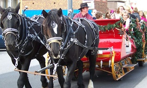 Pleasures Past Carriages: Horse-Drawn Christmas Lights Carriage Ride for Up to 6, 12, or 20 from Pleasures Past Carriages (Up to 47% Off)