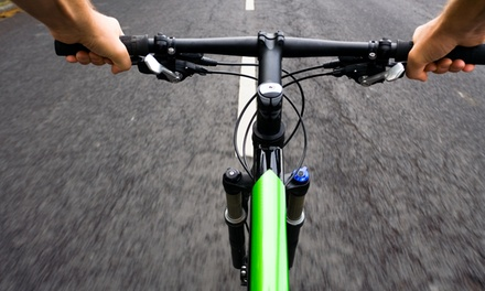 $40 for $80 Worth of Bicycle Rental — EcoMotive Electric Bikes
