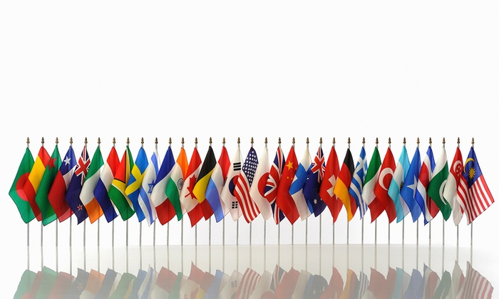 Foreign Language Online Course from Vizual Coaching Academy (84% Off)