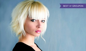 Protege Academy: Haircut with Optional Partial or Full Highlights at Protégé Academy (50% Off)