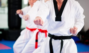 Tusc Shaolin-Do Kung Fu: $99 for $180 Worth of Martial-Arts Lessons — Tusc Shaolin-Do Kung Fu