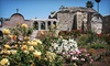 Mission San Juan Capistrano - Mission San Juan Capistrano: Visit for Two or Four Adults to Mission San Juan Capistrano (Half Off)