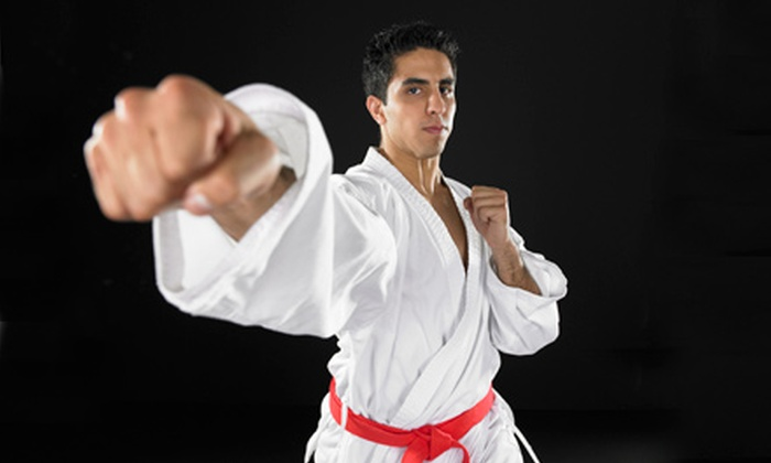 Candal's Jiu Jitsu & Mixed Martial Arts - Candal Martial Arts Academy: $10 for $20 Worth of Fitness Classes at Candal's Martial Arts Academy