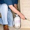 62% Off Pest Control from DFW Bug