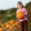 Up to 52% Off Pumpkin Farm and Maze Visit