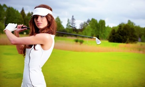 GolfSmarts: One or Three 60-Minute Private Golf Lessons with Swing Analysis and Digital Recording at GolfSmarts (Up to 69% Off)