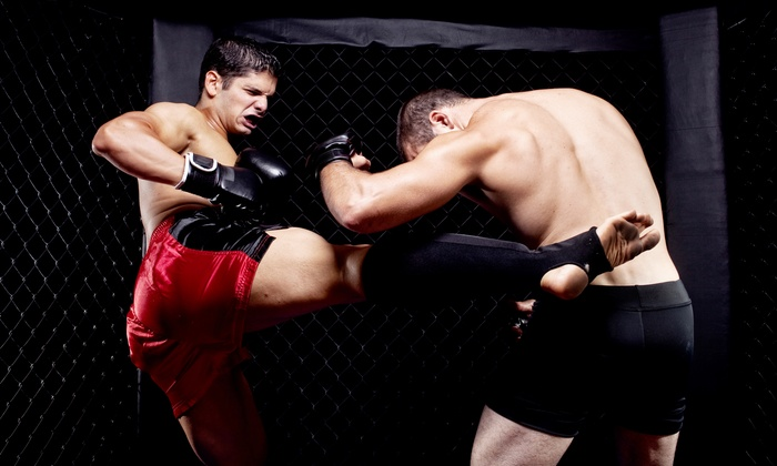 Florida Championship Fighting - East Lake-Orient Park: $20 for Florida Championship Fighting MMA Event on Monday, February 17, at 7:30 p.m. at Dallas Bull ($34.50 Value)