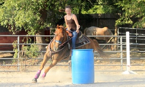 Loveland Ranch: Two 2-Hour Barrel-Racing and Speed-Event Lessons for One or Two at Loveland Ranch (Up to 51% Off)