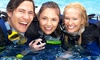 Lodge Scuba - Croydon: PADI Open Water Referral Course for £79 at Lodge Scuba (59% Off)