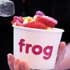 Half Off at Frog Frozen Yogurt Bar in Hollywood
