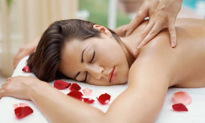 Natural Elements & Spa - Irving Park: $60 for $120 Groupon — Natural Elements & Spa
