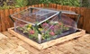 Cold Frame Double Plant Protector: Cold Frame Double Plant Protector