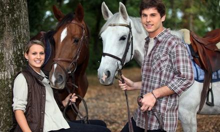 Passeggiata a cavallo e aperitivo per 2 o 4 persone alle Scuderie Longatti (sconto fino a 88%)