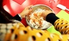 Cook & Go - Chelsea: Cooking Class For One or Two at Cook & Go (Up to 51% Off)