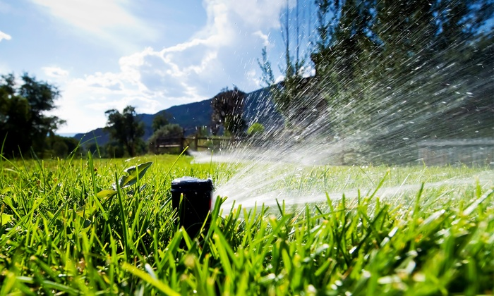 null - Omaha: Sprinkler Head Replacement or Sprinkler Start Up from LawnTech Incorporated (57% Off)