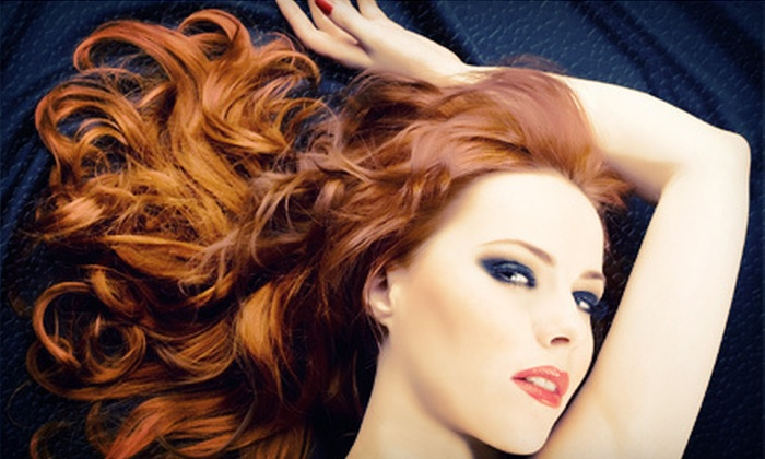 The Salon Spot - Ahwatukee Foothills: Cut, Style, Deep Condition, and Paraffin Hand Wax with Optional Partial Highlight at The Salon Spot (Up to 70% Off)