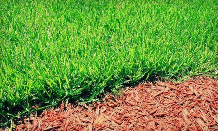 GreenLawn - St John's: $34 for a Spring Fertilizer Treatment for Up to 5,000 Square Feet of Lawn from GreenLawn ($69 Value)