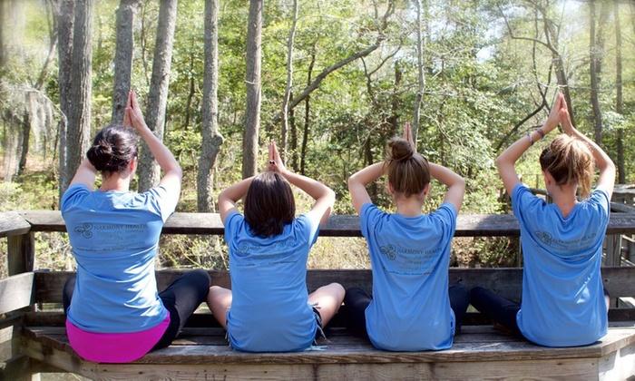 Harmony Health Life & Fitness - Harmony Health Life & Fitness: Up to 66% Off Yoga Classes at Harmony Health Life & Fitness