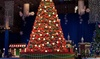 Navy Pier –Up to 40% Off Attractions at Winter WonderFest