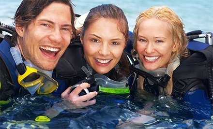 Discover Scuba Diving Course with Gear for One, Two, or Four at Adventure Scuba Diving (Up to 63% Off)