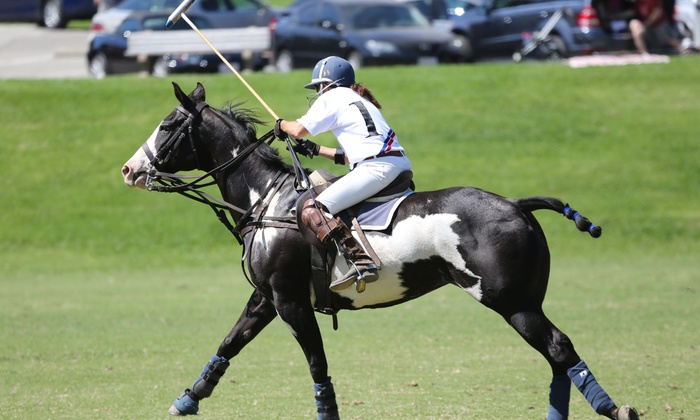 Hyt Polo - Burbank: One Week of Polo Lessons from HYT Polo (61% Off)