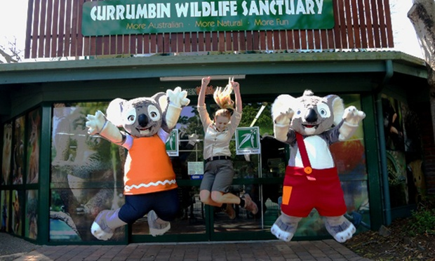 Currumbin wildlife sanctuary discount coupons
