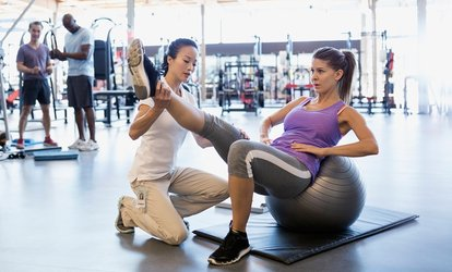 image for 10 Gym Passes or One-Month Membership for One or Two at Snap Fitness